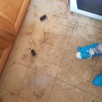 Hampshire floor cleaning